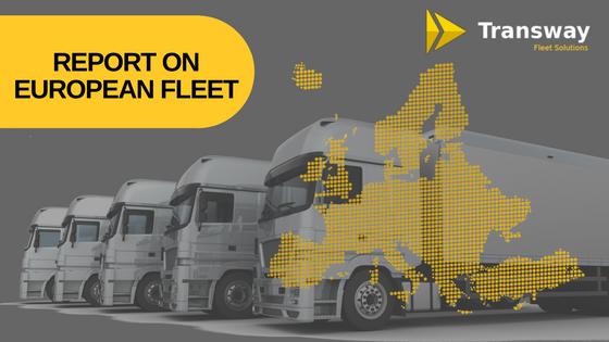 Report on European Motor Vehicle Fleet